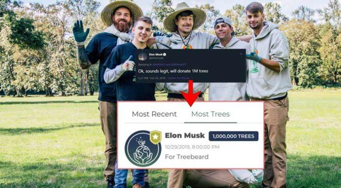 Η δωρεά του Elon Musk για την καμπάνια TeamTrees