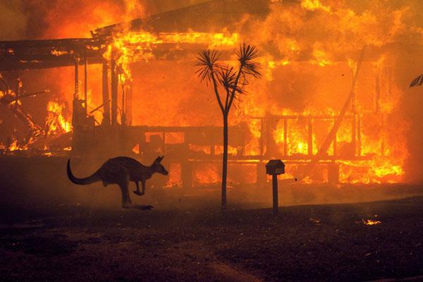 Τα τελευταία νέα σχετικά με την φωτιά στην Αυστραλία