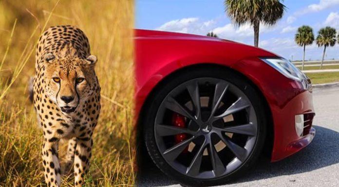 Το νέο Cheetah Stance της Tesla βελτιώνει την επιτάχυνση