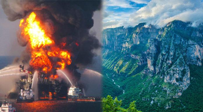 Επείγουσα έκκληση από WWF και Greenpeace προς τους πολίτες για το νέο νομοσχέδιο